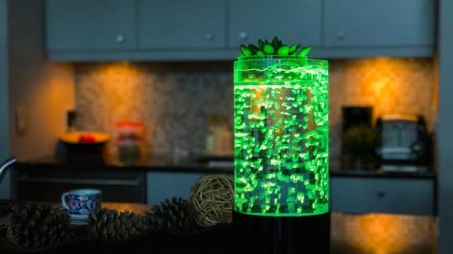 水生植物LED灯给你创造梦幻光影