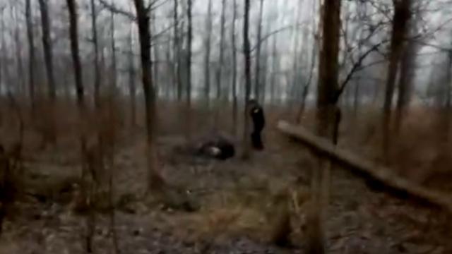 实录|民警大战疯牛,近距离开枪击毙