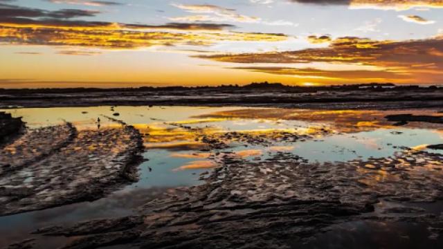 一个视频告诉你,新西兰究竟有多美