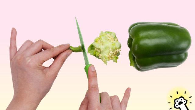 教你青椒的快速去籽法