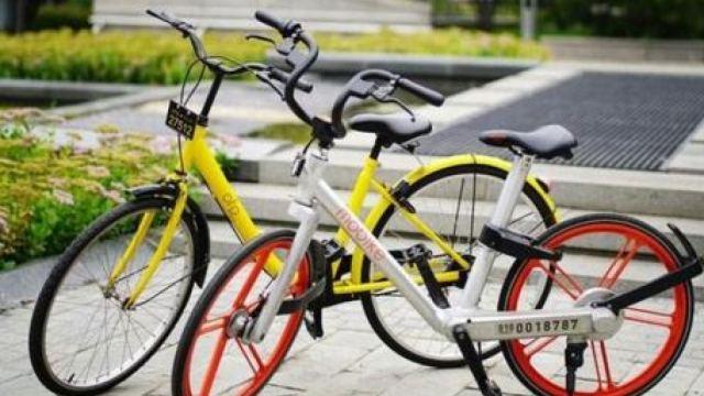 共享单车这场价格恶战年初就约好了