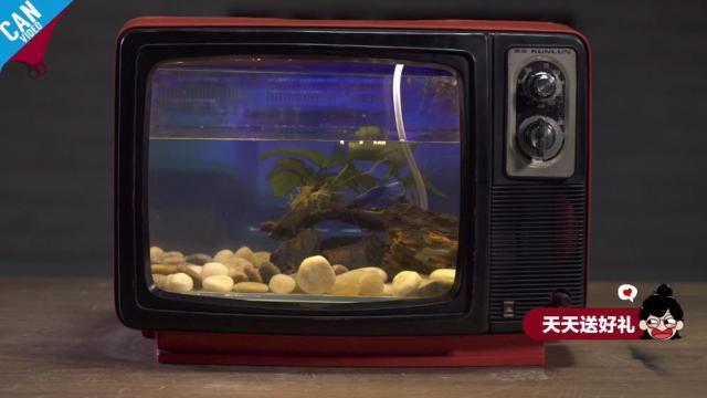 DIY复古电视水族箱