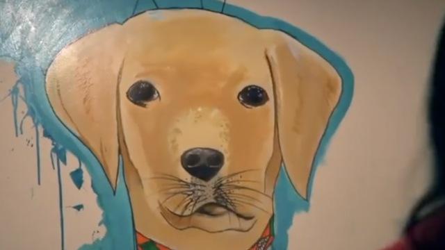 这家狗狗咖啡店,吃喝玩乐样样行