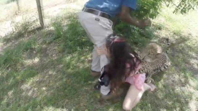 惊魂一刻:中国女孩南非遭猎豹攻击