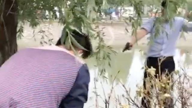 警察追捕逃犯鸣枪,引来一群围观者