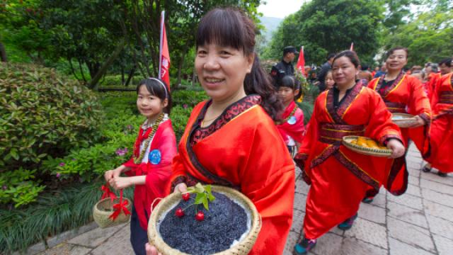 立夏到!杭州,千人排队吃乌米饭