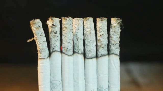 烟民必看!香烟燃烧全过程
