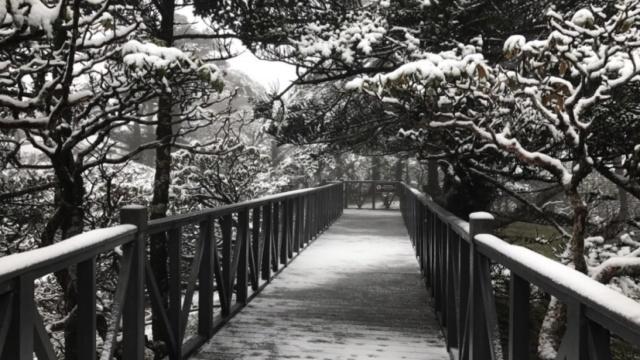云南大理苍山五月飘雪,惊艳了时光