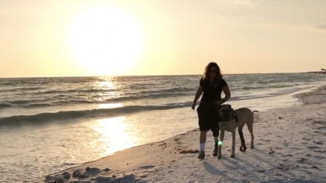 暖哭!只有一条腿的她和狗相依为命