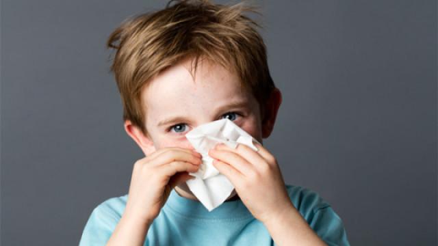 孩子这样揉鼻子,警惕过敏性鼻炎!