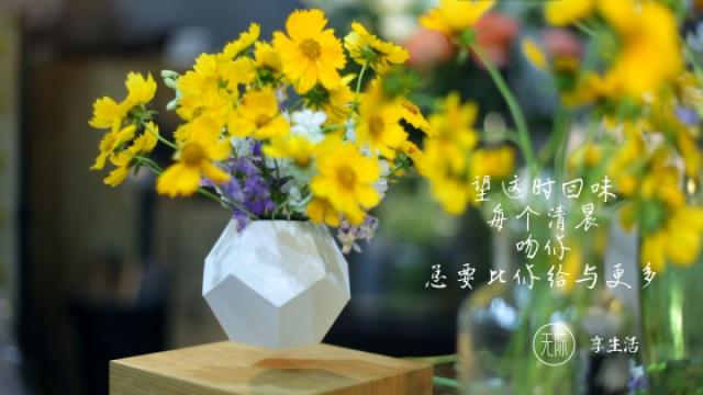 磁悬浮进入生活,花盆就是艺术