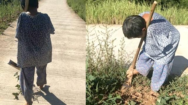她失双臂靠脚生活50年,种8亩庄稼