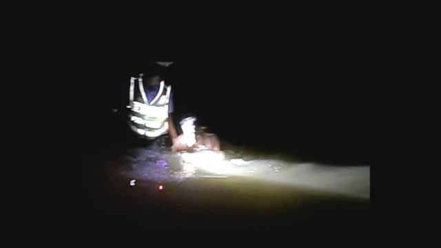 毒驾男弃车逃跑,慌不择路跳下水塘