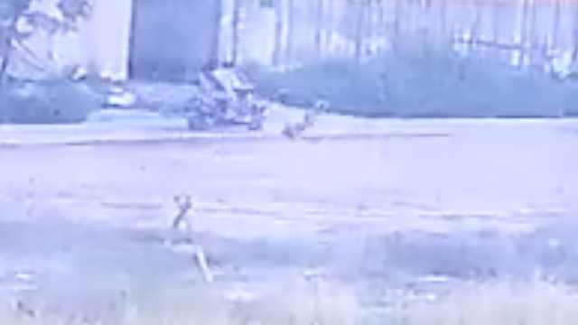 他骑车撞男童逃逸,后座女毫无反应