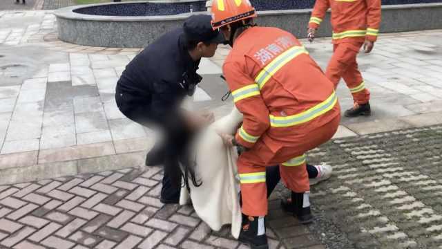 女子挥白围巾要跳楼,消防拦腰抱救