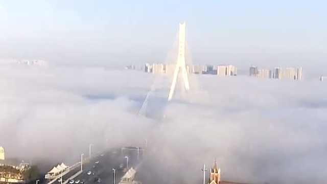 哈尔滨突降大雾锁城,松花江消失