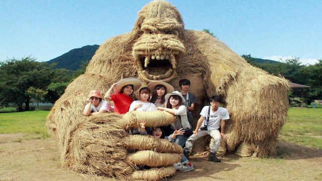 直播:最柔软的猛兽,稻草艺术展!