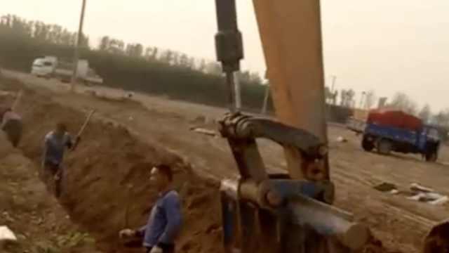 阵仗大!村民挖山药,开挖掘机助阵