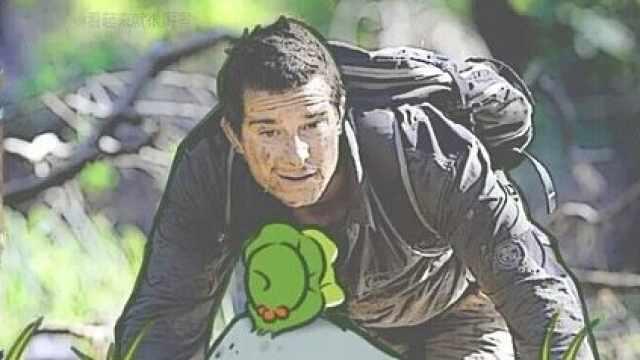 蛙儿子没回家会死吗?老母亲放宽心