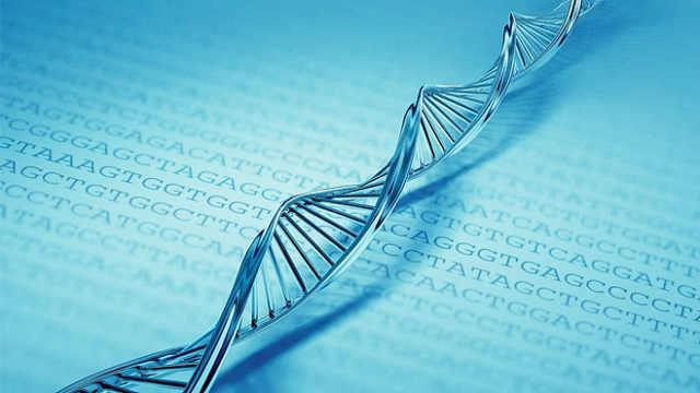 信息技术重大革命:用DNA代替硬盘
