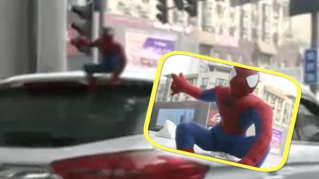 蜘蛛侠快下来!车顶玩偶将被严惩