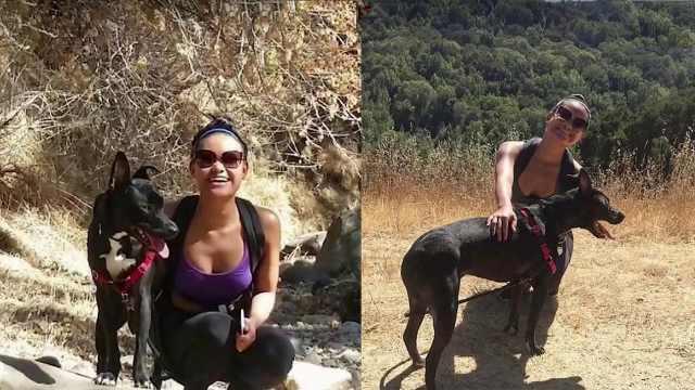主人经历低潮期,狗狗让她重展笑颜