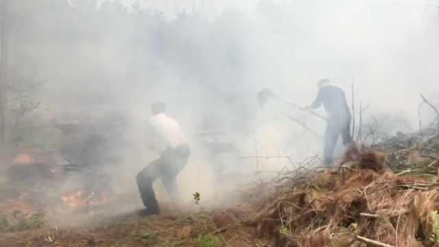 特巡警扫墓遇山火,全家上阵灭火