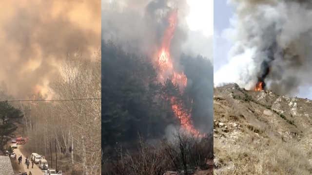 河北一景区附近林场失火,浓烟遮天