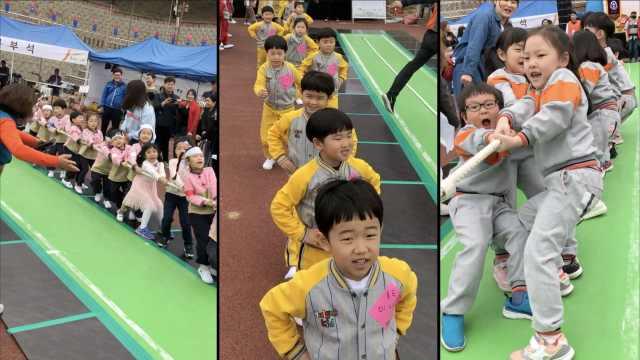 韩国萌娃拔河比赛,家长比孩子兴奋