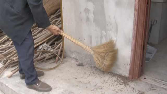 草鞋虫爬满农家院,村民称1天扫几斤