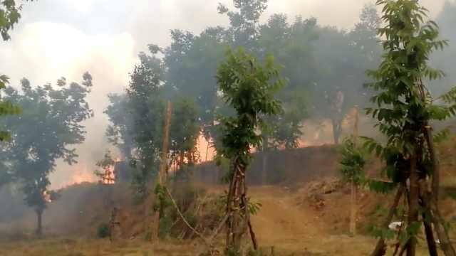 大理苍山火灾,2直升机730人正扑救