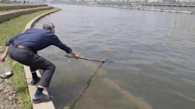 松花江放30万鱼苗,老汉守在下游捞