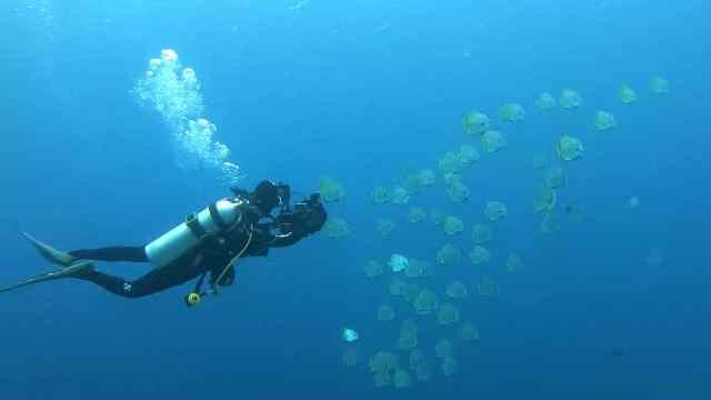 潜行天下微视频:大海的力量花絮