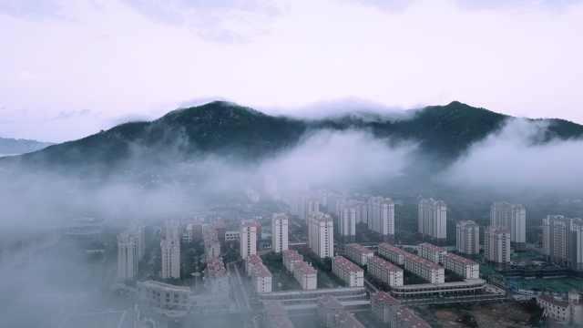 宛如仙境!60秒看青岛梦幻平流雾