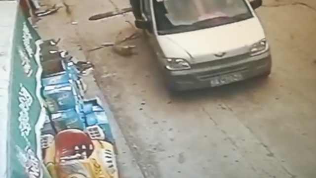怒!他们开套牌车进村,3秒掳走狗狗
