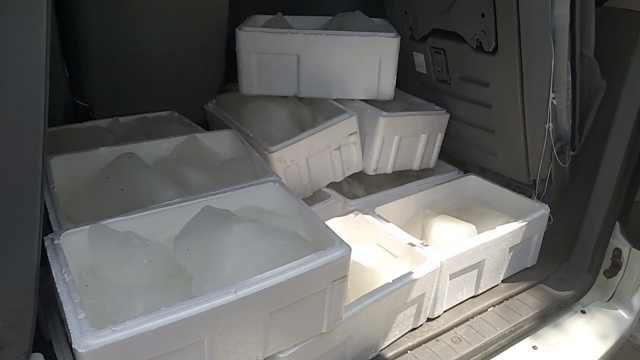 降温神器!公交车放冰块,每天800斤