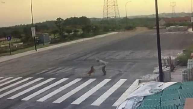 路边冲出一条大狗,锻炼大爷遭扑咬