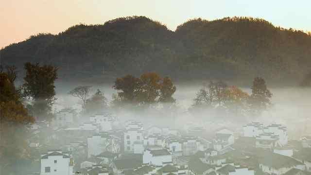 这里每天清晨都云雾缭绕,好似仙境