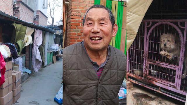 72岁大爷倾尽所有养上百只流浪猫狗