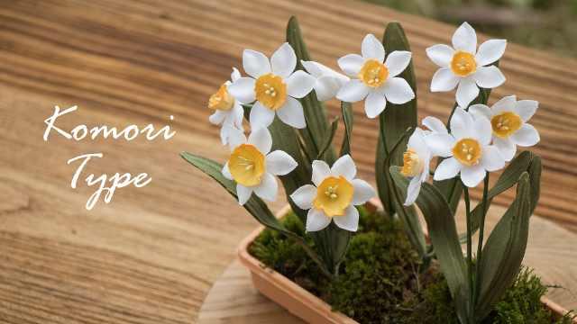 过年宅在家做盆仙女级别的水仙花
