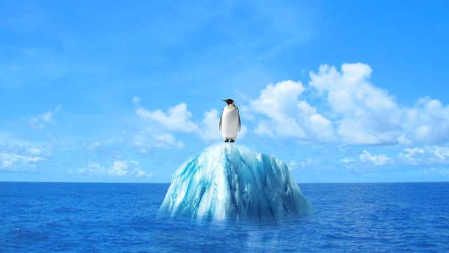 冰川使海平面55年上升约27毫米