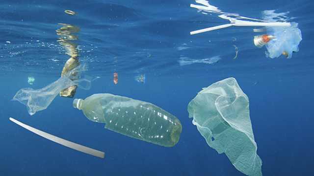 加拿大2021年将禁止使用一次性塑料