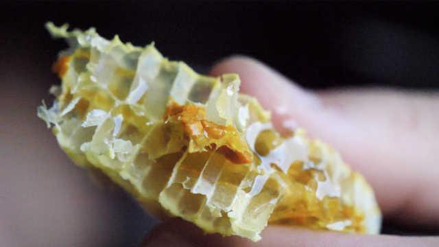 野生蜂蜜,好吃到舔手的纯天然美味