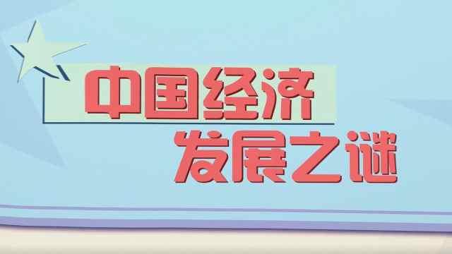 第2集:中国经济发展之谜