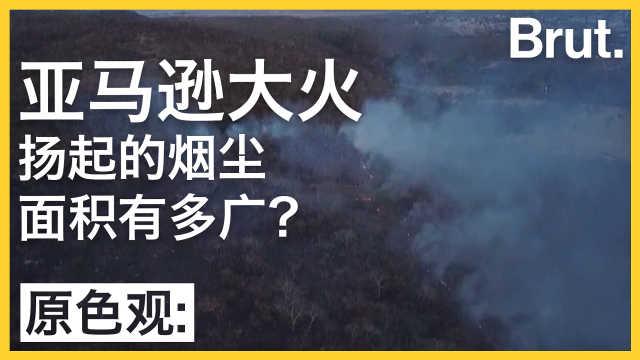 亚马逊森林大火烟尘面积有多大?