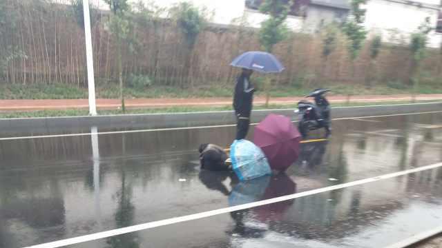老人雨天推童车被撞翻,2学生救助