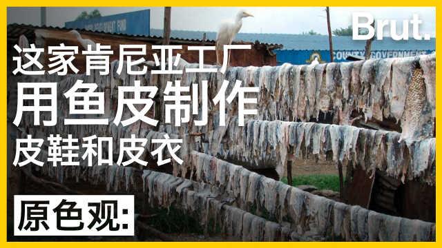这家肯尼亚工厂,用鱼皮制作服饰