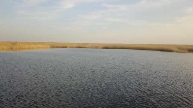 干涸近半世纪,青土湖复活4万亩湖面