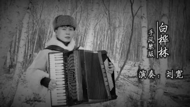 《白桦林》——手风琴版