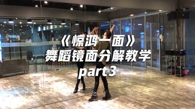 《惊鸿一面》舞蹈分解教学part3